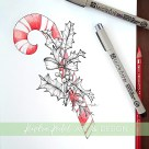 candy cane holly botanical illustration