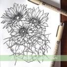 flowering cactus botanical illustration