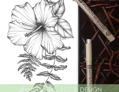 hibiscus botanical illustration