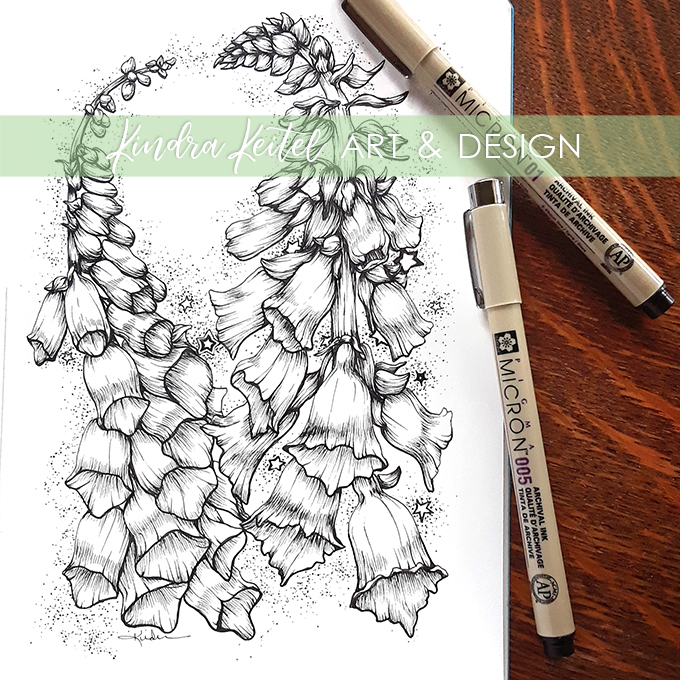 foxglove botanical illustration