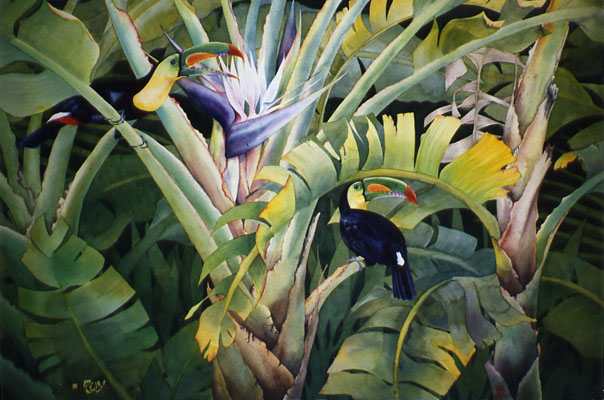 Toucans by Lucinda Hayes
