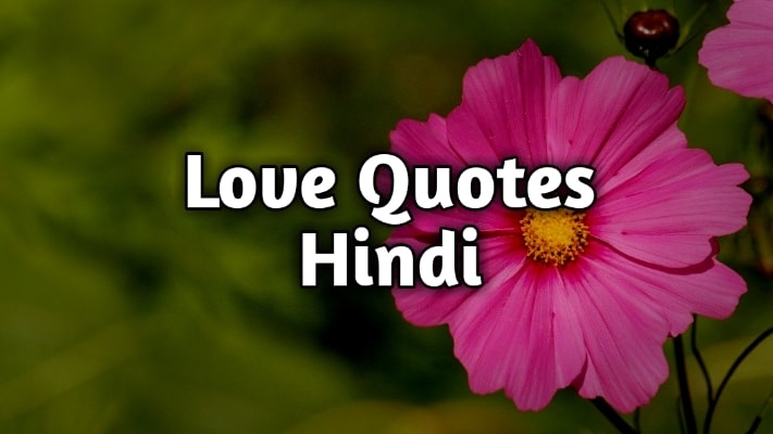 150+ Love Quotes in Hindi, Heart Touching Love Lines in Hindi