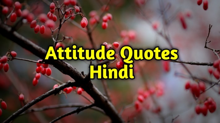 Attitude Quotes In Hindi | Best Positive Attitude Quotes for boys