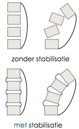 Stabilisatie spieren