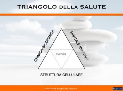 Triangolo integrato della salute