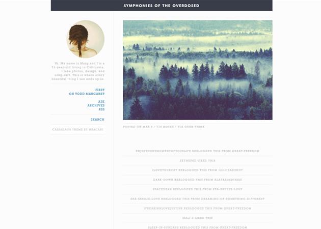 Free Tumblr Themes I love - July 2014 - Kinetic Bear