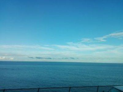 東海道線から見える海