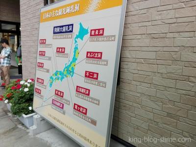 日本の主な観光鍾乳洞