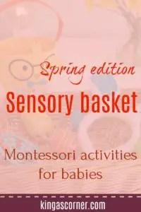 sensory basket pin