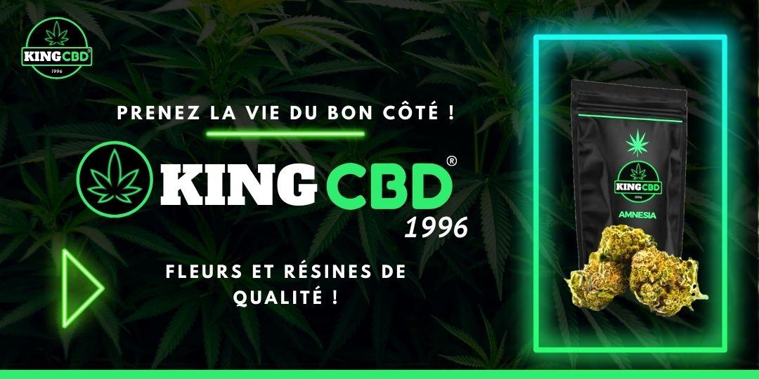 King CBD Tours