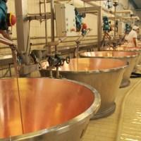 Grana Padano Cheese Factory