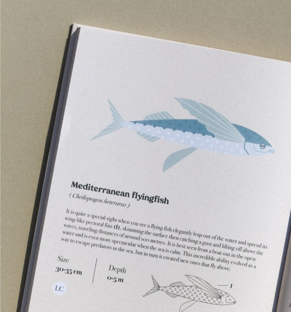 Life in The Mediterranean Sea book