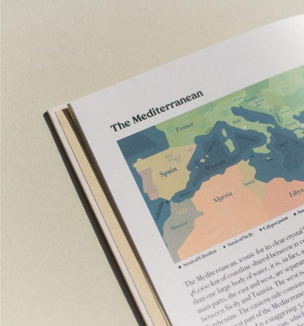 Life in The Mediterranean Sea