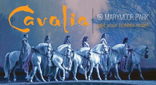 Cavalia at Marymoor Park