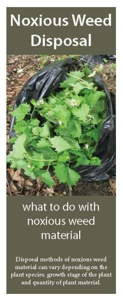 Cover of the Noxious weed disposal brochure from the Washington State Noxious Weed Control Board