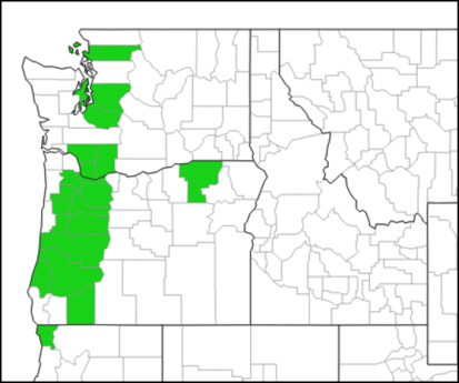 Shiny geranium (Geranium lucidum) distribution in Washington, Oregon and California. Excerpted from EDDMapS on 4/13/2017.