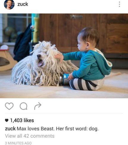 Mark Zuckerberg Shares Cute Photo Of His Daughter, Reveals