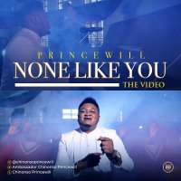 MUSIC Video + Audio: Princewill - None Like You