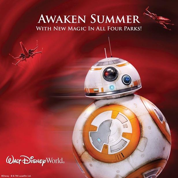 Awaken Summer
