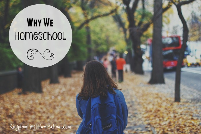 Why We Homeschool {Hasta Luego Comfort Zone}