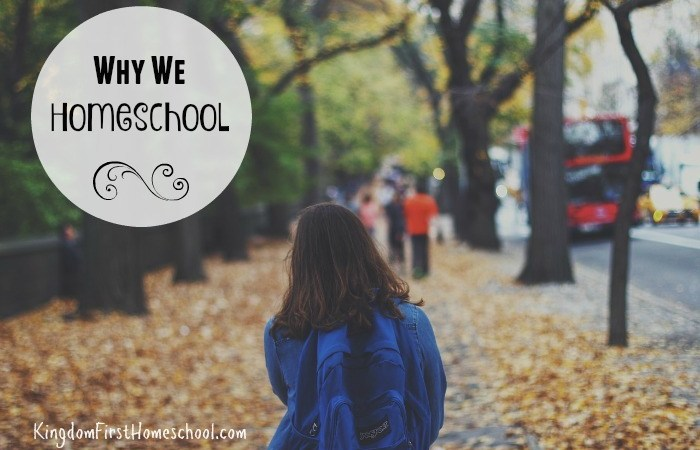 Why We Homeschool {Hasta Luego Comfort Zone}