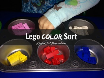Lego Color Sort Preschool Activity