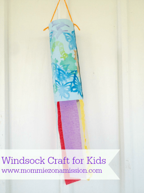 windsock craft
