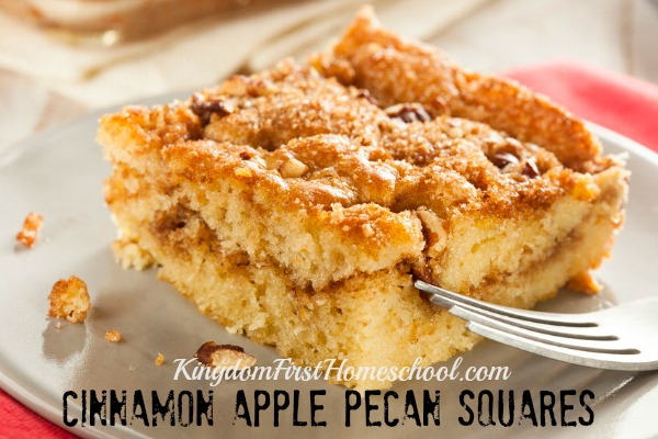 Cinnamon Apple Pecan Squares