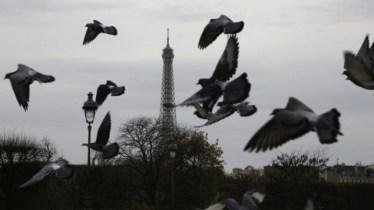 France-Paris-Attacks_Horo