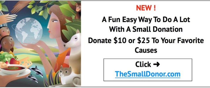 New! A Fun Easy Way To Do A Lot With A Small Donation: Donate $10 or $25 to your favorite causes…click on TheSmallDonor.com