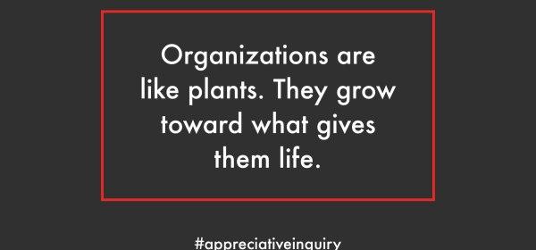 ai organizations are heliotropic