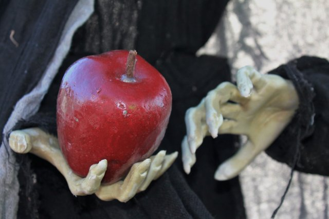 Halloween witch hands with apple