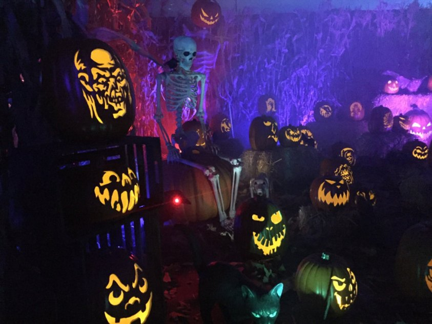 Wicked Pumpkin Hollow in Hall of Shadows