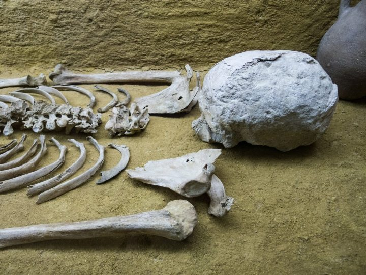 Skeleton in Dirt buried body Halloween riddle