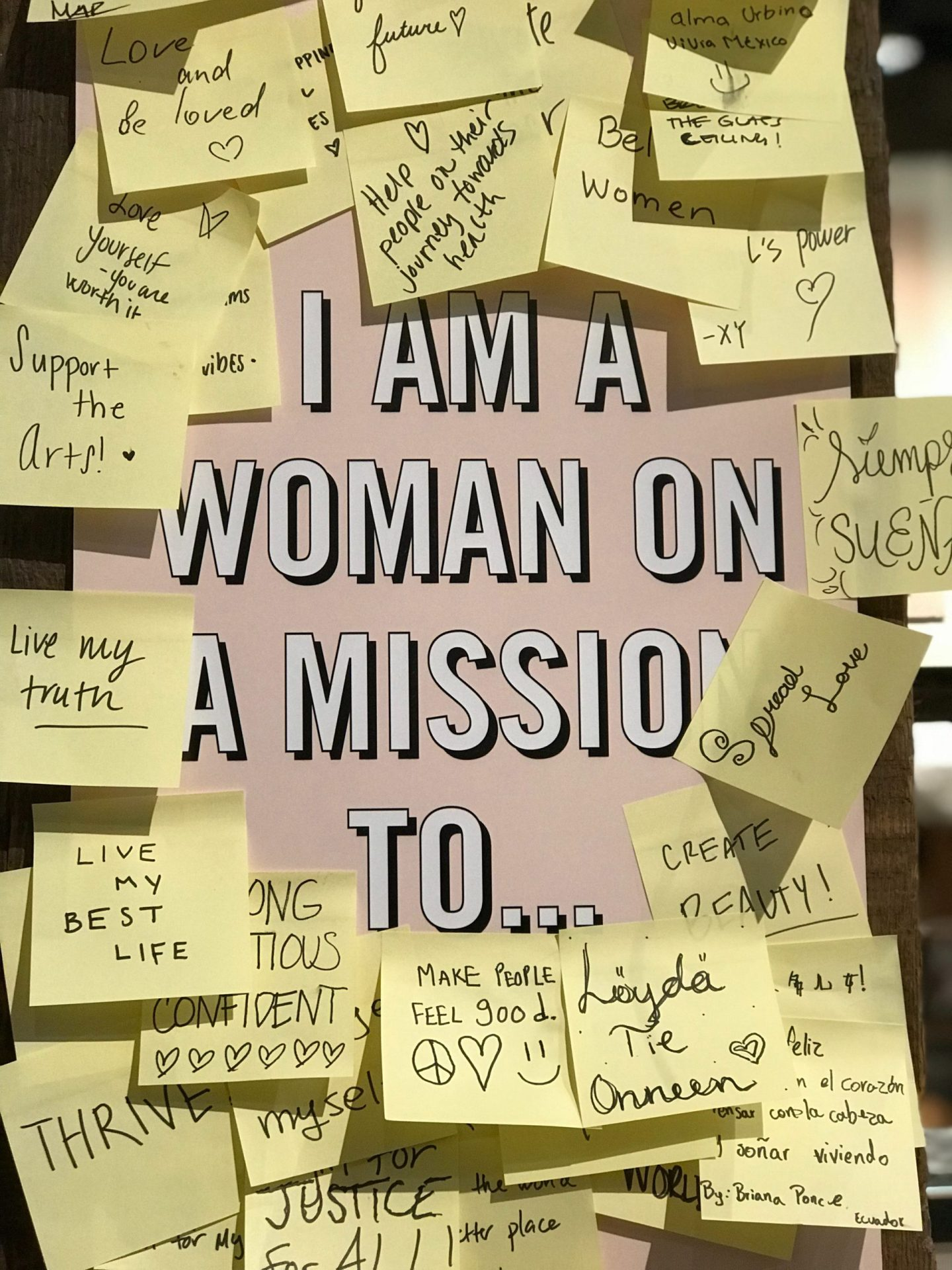 Graphic showing showing I am a woman on a mission