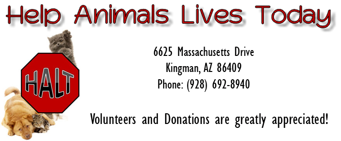 H.A.L.T. Help Animals Lives Today