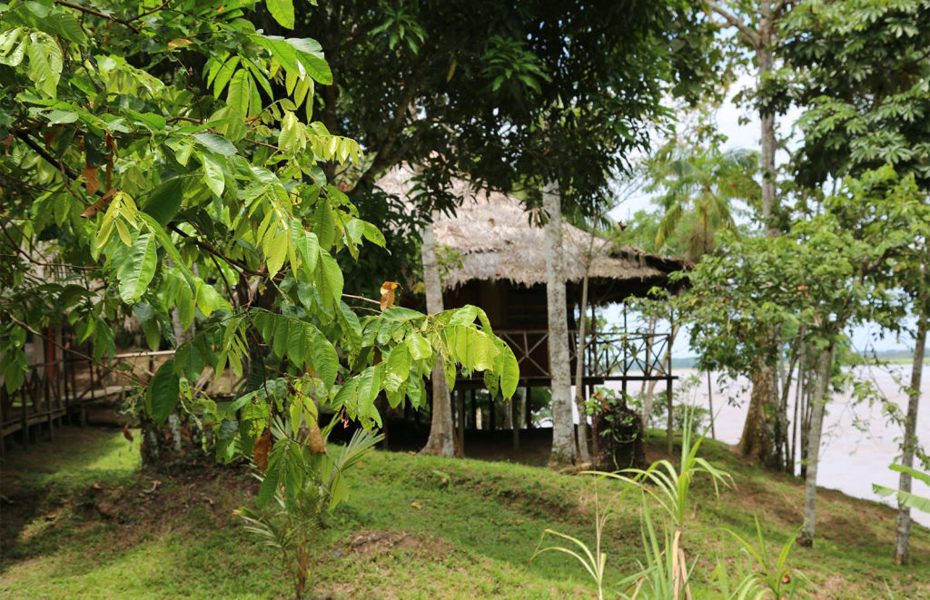 The Riverview Room - King of Compassion Resorts Ayahuasca
