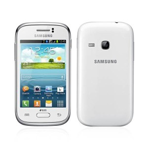 Samsung Galaxy Young 2 (S6310)