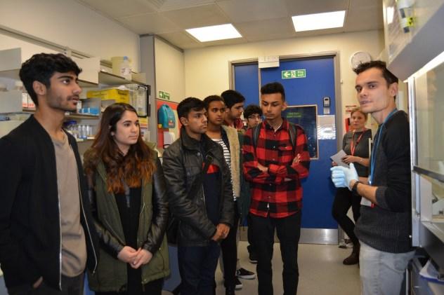 Tissue culture lab tour