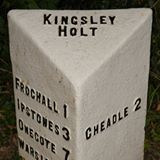 Kingsley Holt