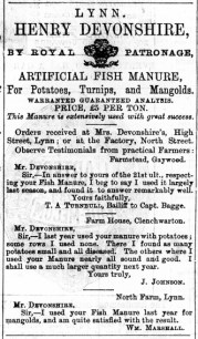 1875 February 6th Henry Devonshire @ 26 or 29 (query)