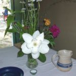 Magnolia and Shrub pitcher