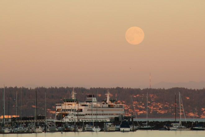 Moon Light in Kingston
