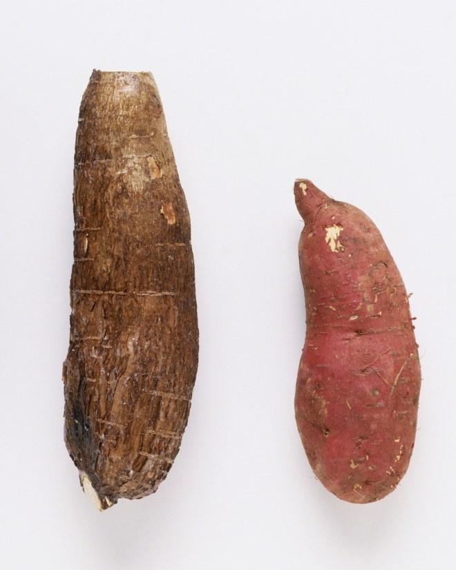 yam-vs-sweet-potato