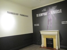 Museum of Heath - Blog - Century install 013