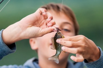 fishing boys campers nature fish kingswood camp overnight