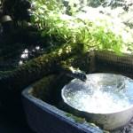 ズボラな僕が水換えに汲み置きした水を使うわけ
