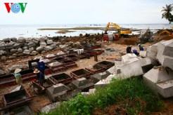 Công trường sản xuất các khối bê tông kè biển, ở giữa xã An Vĩnh và An Hải