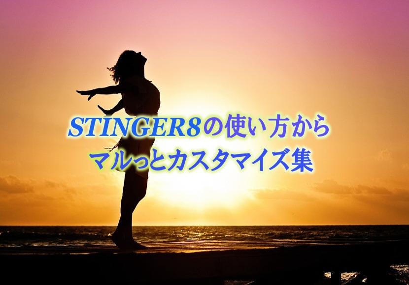 STINGER8のカスタマイズ集