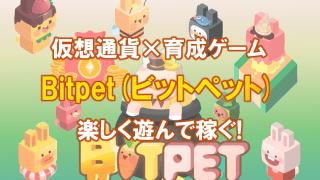 仮想通貨で育成ゲームが楽しめるBitpet(ビットペット)で遊んで稼ぐ!